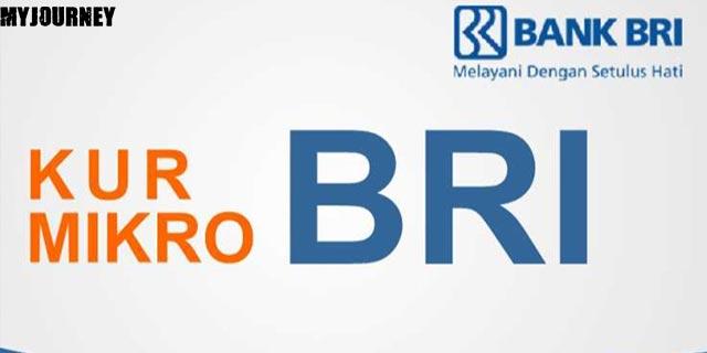 KUR Mikro Bank BRI 1